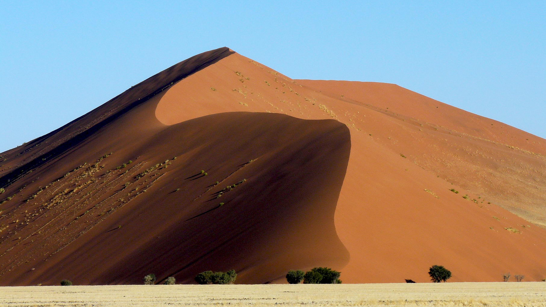 Travel-Coach-Namibie-dune-orange-Desert-Namib-Sur-Mesure_resize